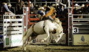 rodéo sur un cheval